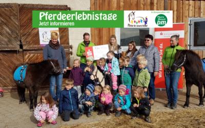 Pferdeerlebnistage auf dem Haldenhof in Aalen-Hofen