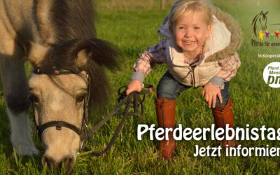Pferdeerlebnistage: Kinder ans Pferd bringen
