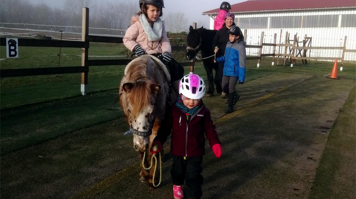 Stephanie Sauler - Schenke Kindern Zeit mit Pferden - Pferde für unsere Kinder e (1)