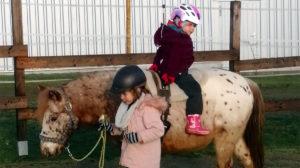 Stephanie Sauler - Schenke Kindern Zeit mit Pferden - Pferde für unsere Kinder e.V.