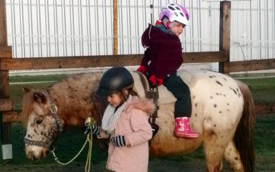Stephanie Sauler schenkt Kindern Zeit mit Pferden!
