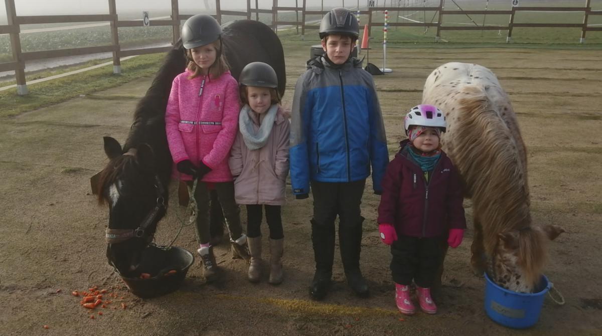 Stephanie Sauler - Schenke Kindern Zeit mit Pferden - Pferde für unsere Kinder e (3)