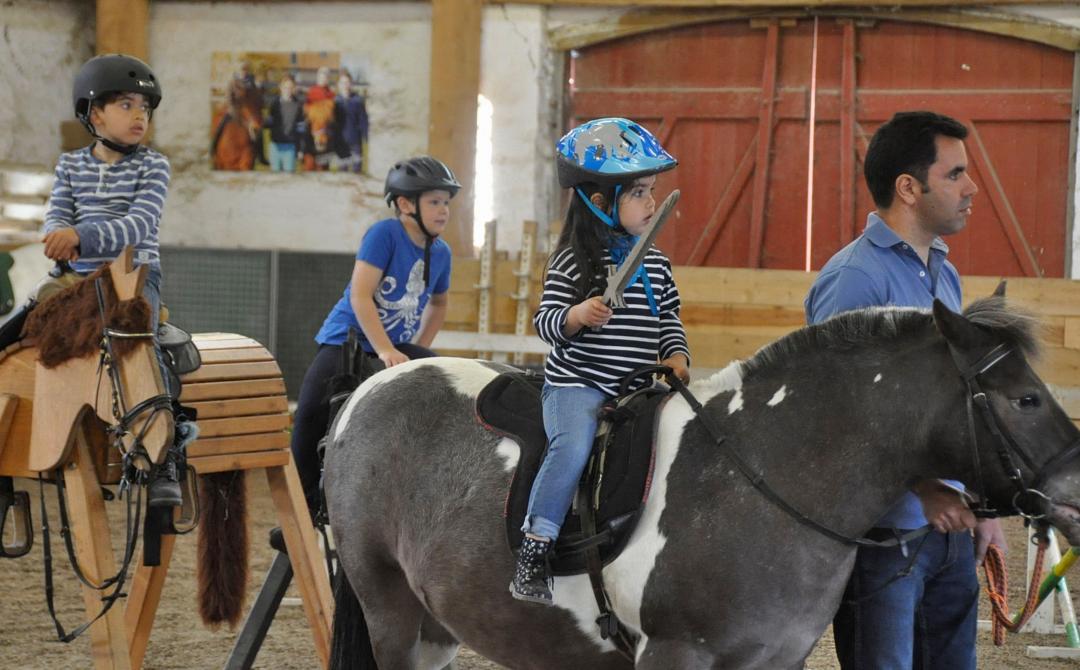 """Der Pony-Führerschein®, """"Pferde für unsere Kinder e.V."""" und Cornelia Poletto im TV"""