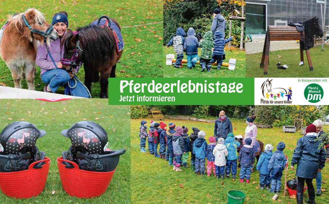 Langsam, lieb und leise – Pferdeerlebnistag in Memmingen