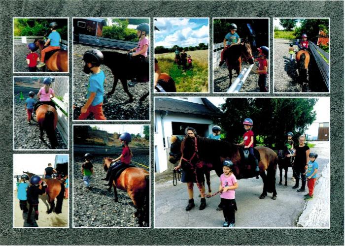 Besuch der Königskinder bei den Ponys auf dem Mühlfeldhof