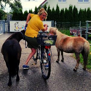 Sommerspaß mit dem Ponyhof Lutz in Legau - Pferde für unsere Kinder