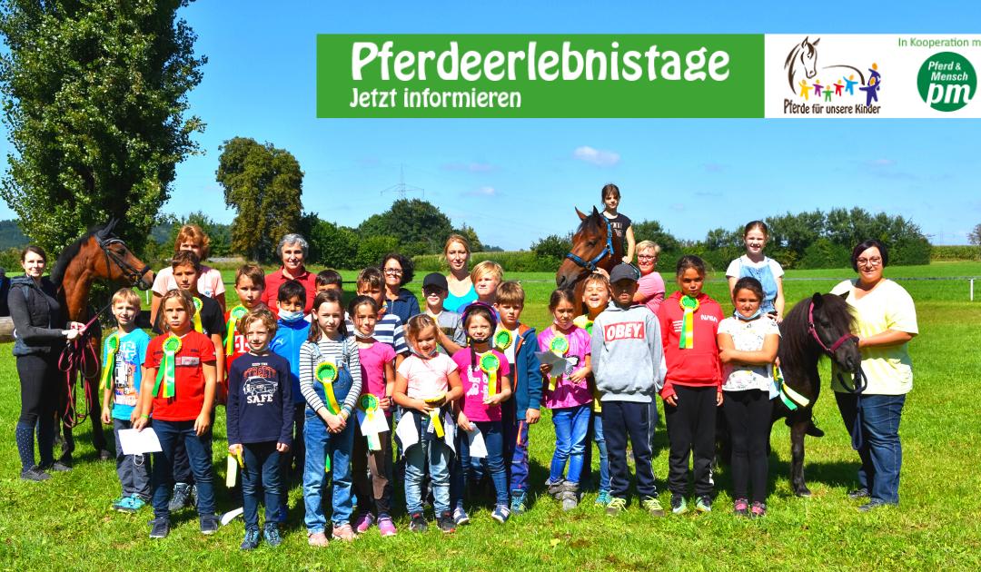 Pferdeerlebnistag beim Pferdesportverein St Leonhard Achsheim e.V.